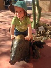 20151003_Shannon_phone_0025.jpg (Ryan and Shannon Gutenkunst) Tags: arizonasonoradesertmuseum codygutenkunst javelinastatues smile tucson az usa
