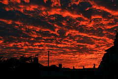 Street Sunset Sept 27th 2016 (Marcus T Ward) Tags: sunset street silhouette red sky clouds