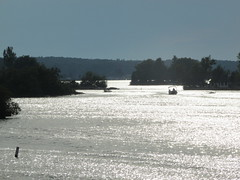 GANONOQUE, THOUSAND ISLANDS (bitemeasshole69) Tags: water whataview woda stlawrenceriver ontario outdoors
