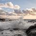 Bølger i Bodø