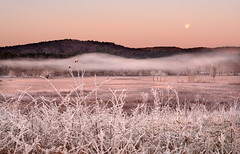 Moonset at Sunrise (Appalachian Hiker) Tags: moon mist mountains west ice fog dawn spring frost meadow rime cadescove gsmnp