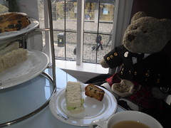 """""""I'll stuff anything I can't eat into me sporran for later!"""" (pefkosmad) Tags: bear uk holiday ted scotland teddy holibobs willowtearooms tedricstudmuffin tedglasgow"""
