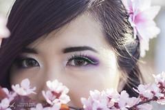 The  Girl behind the blossoms (InsaneAnni) Tags: portrait germany cherry costume spring vietnamese dress traditional blossoms frühling chemnitz kostüm tracht kirschblüten เวียดนาม ผู้หญิง vietnamesin ฤดูใบไม้ผลิ คนเวียดนาม