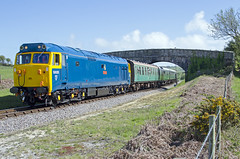 Swanage Diesel Gala 2015 (ashthemainman) Tags: castle diesel norden royal class 50 ark corfe gala swanage 2015 50035