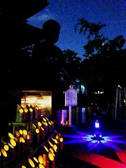 Mallow Candles Festival (brisa estelar) Tags: blue red statue festival japan night temple lights asia candles buddha traditional buddhism bamboo mallow sect tokugawa shingon koushoji