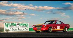 Shelby GT350 Hertz (nbdesignz) Tags: gran turismo 6 playstation3 ps3 gt6 nbdesignz photomode photoshop edited edit car cars ford mustang shelby gt350 hertz rent racer gt350h gt 350 h