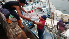 Gain  Wuqi Fishing port (rightway20150101) Tags: wuqi fishing port taichung taiwan fish