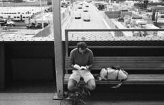 SoHo High Line (vote4blake) Tags: film leica m7 trix trix400 kentmere nyc new york city street shots shooting grain bw black white cbiogon carl zeiss 35mm 3528 35 mm f28 m mount manual focus sunny 16 high line soho portraits