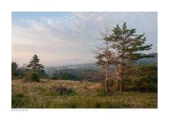 early morning above the valley (Igor Kare) Tags: landscape fog mist earlymorning morninglight