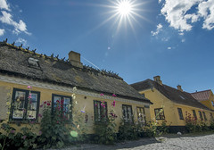 Dragr (acase1968) Tags: dragor denmark danmark nikon d500 tokina 1020mm f28 thatch roof houses sunstar sun star bright sunny mostly clouds clear blue sky yellow red roofs