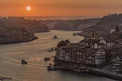 Atardecer en Oporto @ Jovisur (jovisur) Tags: porto portugal rioduero duero atardecer ocaso sol rio oporto barcos navegar navegable vino gaviotas mar puente