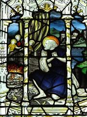 Kempe window (Kniphofia) Tags: wellscathedral kempe