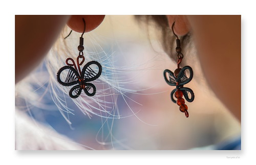 """The day where a Butterfly met a Dragonfly • <a style=""""font-size:0.8em;"""" href=""""http://www.flickr.com/photos/88042144@N05/29503555231/"""" target=""""_blank"""">View on Flickr</a>"""
