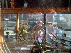 Layers of Reflection (Georgie_grrl) Tags: toronto ontario reflection me window mirrors storefront queenstreetwest antiquestore canonpowershotelph330hs