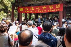 Les Pekinois se retrouvent pour chanter tous les matins, avec entrain !
