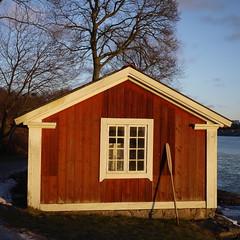 . (tsienni) Tags: winter house tree ice window nature architecture landscape vinter fisherman sweden natur lakeside nordic sverige scandinavia hus stuga