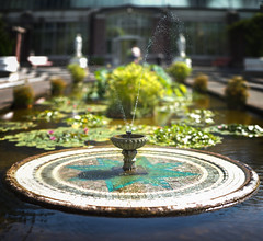 Auckland Fountain (Kiwi Tom) Tags: tomhall fountain auckland newzealand brenizer method panorama bokeh depth