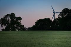 Last Light... (Geraldine Curtis) Tags: sunset lastlight goldenlight barley windturbine sheepwindily derbyshire