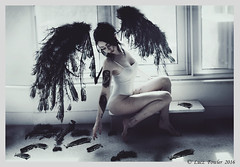 Again .... (Lucz-) Tags: lighting portrait selfportrait broken girl beautiful angel wings model gothic surreal indoor fantasy damaged cinematic heavenly fathers realism photogrpahy