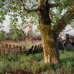 (Anton Novoselov) Tags: nikon super coolscan 8000 ls8000ed film medium format 120 6x6 rolleiflex village russia morning sunrise russian fence church 35 e2 tlr outdoor landscape field xenotar fujifilm reala