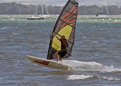 Aug0308a (Mike Millard) Tags: hamworthypark pooleharbour windsurfers