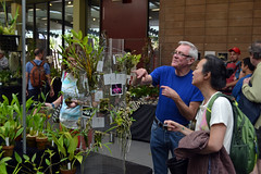 2016-07-23 08789 Orchid Show, SF County Fair Bldg (Dennis Brumm) Tags: sanfrancisco california july 2016 orchids exposition flowers plants bromeliads