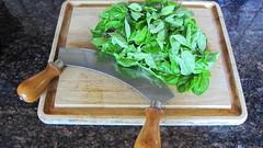 Making pesto (wilson hughes) Tags: basil mezzaluna