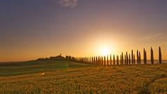 DSC03369 (a.saadhoff) Tags: toskana toscana valdorcia zypressen cipresso landscape landschaft sonnenaufgang sunrise