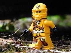 On the run (kelko585) Tags: lego minifig minifigure ninjago skylor afol