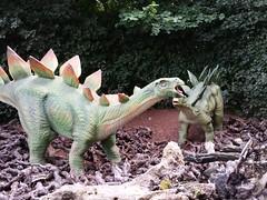 Stegosaurus (zaqina) Tags: dinoland dino stegosaurus dinosaurus