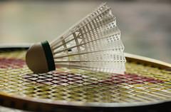 Badminton (beena.samadh21) Tags: summerolympicgames rio macromondays badminton 2016 shuttle racket