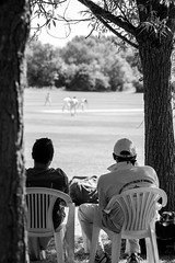 Opening partners (Willers1404) Tags: cricket warwick sunny sport batting india six four boundary dismissed wicket cryfield monochrome nikon 80200 champions victory game drive