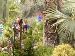 DSCN2661 (dbohaty) Tags: jardin majorelle morocco almaghrib