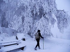 (blogspfastatt (+3.000.000 views)) Tags: snow winter hiver season hiking nature