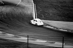 Old car race?? (philippejeanne) Tags: mecanique mecano machine auto automobile allul course car circuit comptition coccinelle cup championnat noir blanc voiture race move rapide ancien old timer