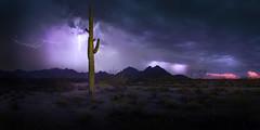 LIghtning over the White Tanks (Ben_Coffman) Tags: arizona bencoffman bencoffmanphotography lightning lightningphotography nightsky saguaro saguarocactus surprise twilight whitetankmountains whitetanks