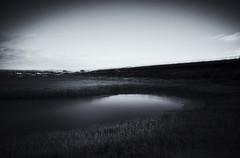 shallow waters (Lamson Noswen) Tags: lake sandiego shallow mono lamson california dark
