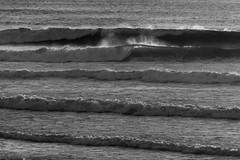 lines (grafficartistg4) Tags: beach crashing dry land nature ocean sand saturday shore water waves weekend wet joshuapeterson2016 lincolncity oregon unitedstates