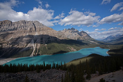 Peyto Lake (SteveJCHicks) Tags: peyto lake alberta canada banff