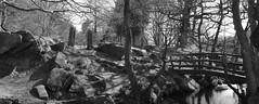 Padley Gorge 108/365 (FadeToBlackLP) Tags: bridge family trees beautiful woodland mono walk peakdistrict gorge padley