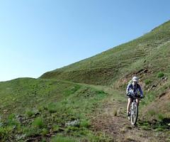 Climbing and Camping (Doug Goodenough) Tags: pedals spokes bicycle bike ride waha salmon river idaho bikepacking packing camping jen scott sadie canyons green spring 205 15 april sun powerline road china creek waphilla drg53115 drg53115p drg53115ppowerline drg531