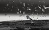 water (Mohammed Alborum) Tags: camera canon photography uae ad abudhabi arab wtc splash canon50mm18 الامارات تصوير ابوظبي العرب مصورين d7100 سبلاش canon70d mohammedalborum انستغرامي