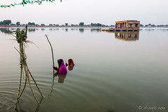 In the Water 5392 (Ursula in Aus) Tags: india puja jaisalmer chatapuja