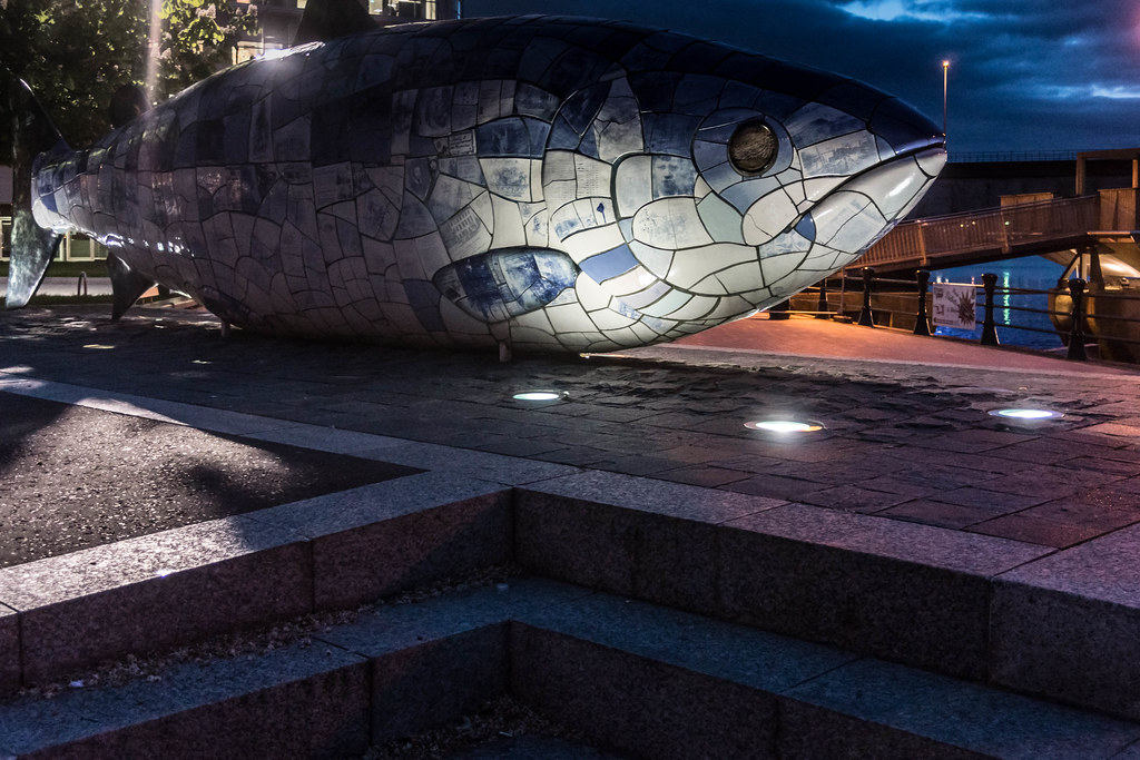 THE BIG FISH NEAR THE LAGAN WEIR IN BELFAST [AT NIGHT] REF-104718