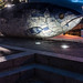THE BIG FISH NEAR THE LAGAN WEIR IN BELFAST [AT NIGHT] REF-104718