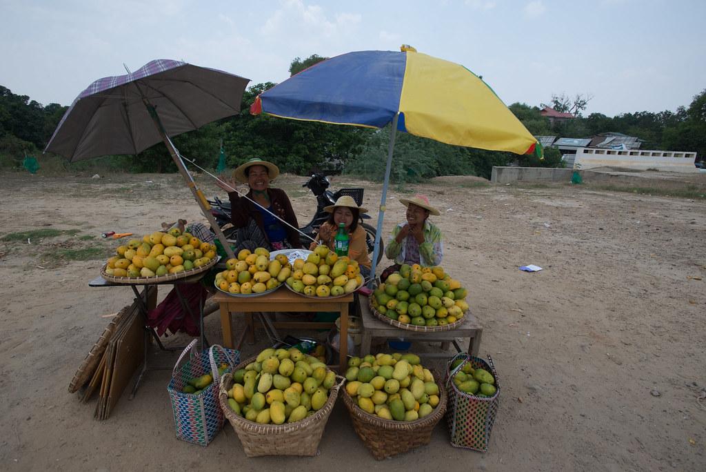 Mango Ladies