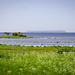 "2015-05-27-10h05m07-Schweden-Gotland • <a style=""font-size:0.8em;"" href=""http://www.flickr.com/photos/25421736@N07/18274553321/"" target=""_blank"">View on Flickr</a>"