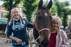 070fotograaf_20160728_022.jpg (070fotograaf, evenementen fotograaf) Tags: 070fotograaf 2016 juli paarden paardenmarkt voorschoten