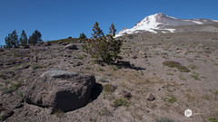 Oregon 2016 (Jonathan Mulkey) Tags: hoodmountain hoodriver oregon trails trilliumlake