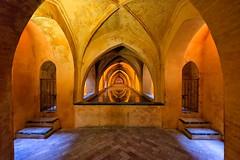 Royal Baths, Alczar of Seville, Spain - 2015 (Ronald_Nelson_Photography) Tags: pool sevilla spain seville baths chamber vaultedceiling alcazaar